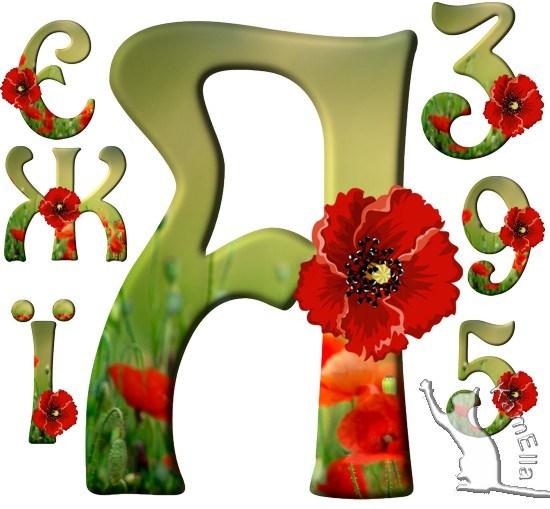 Український алфавіт з маками