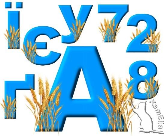 Український алфавіт з пшеничними колосками