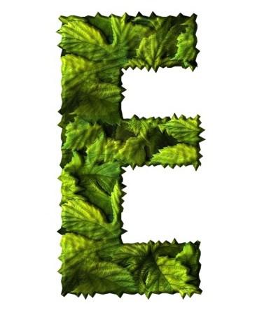 Український алфавіт - Зелене листя