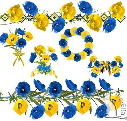 Сині і жовті маки