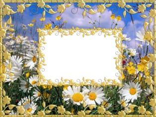 Рамка для оформлення фотографій